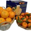 Laranja eta mandarinaz osatutako paketea